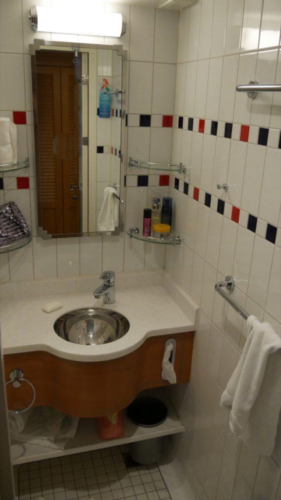 Disney Fantasy Cruise Tips Bathroom