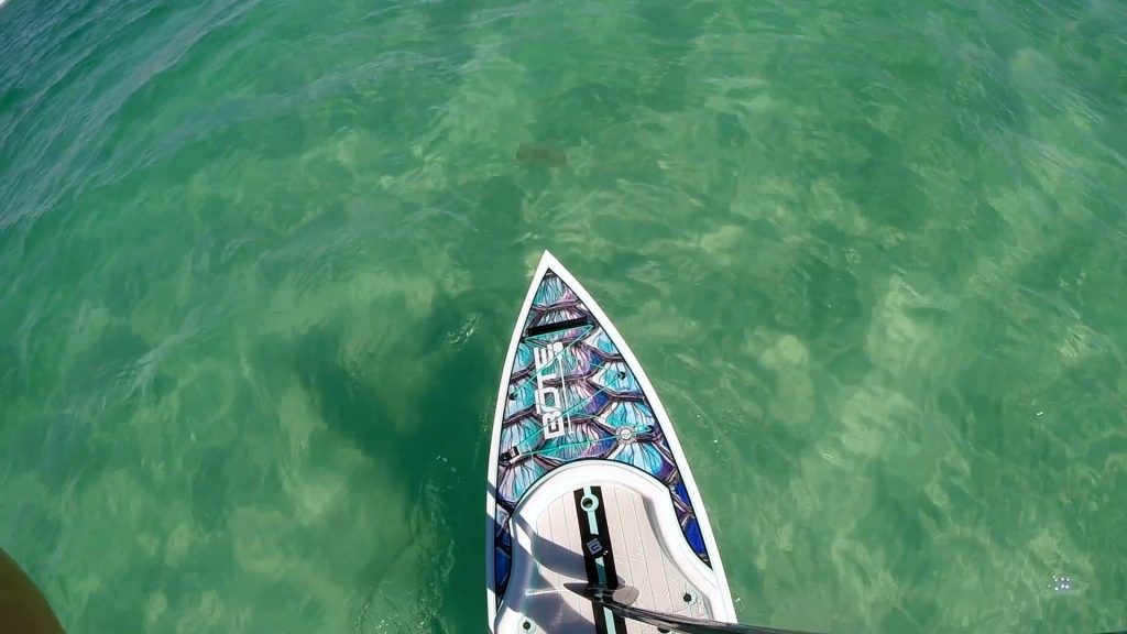 Paddle Boarding in Destin Florida - Bote Rackham Top View