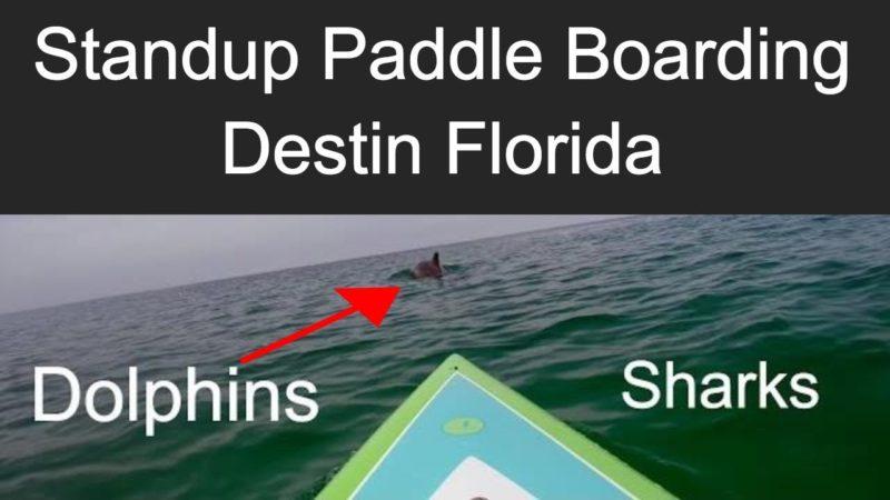 paddle boarding in destin florida thumbnail