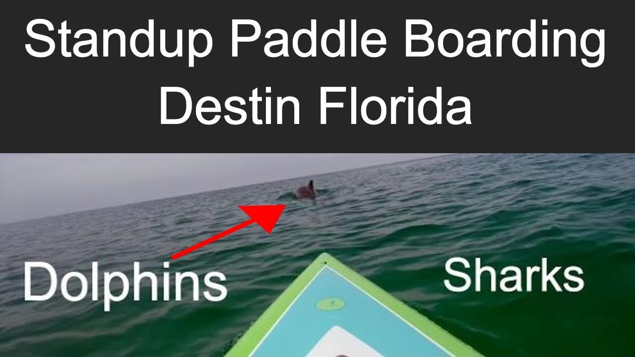 paddle boarding in destin florida thumbnail