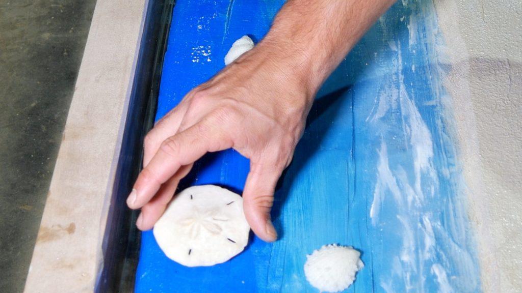 epoxy-resin-ocean-table_sand dollars