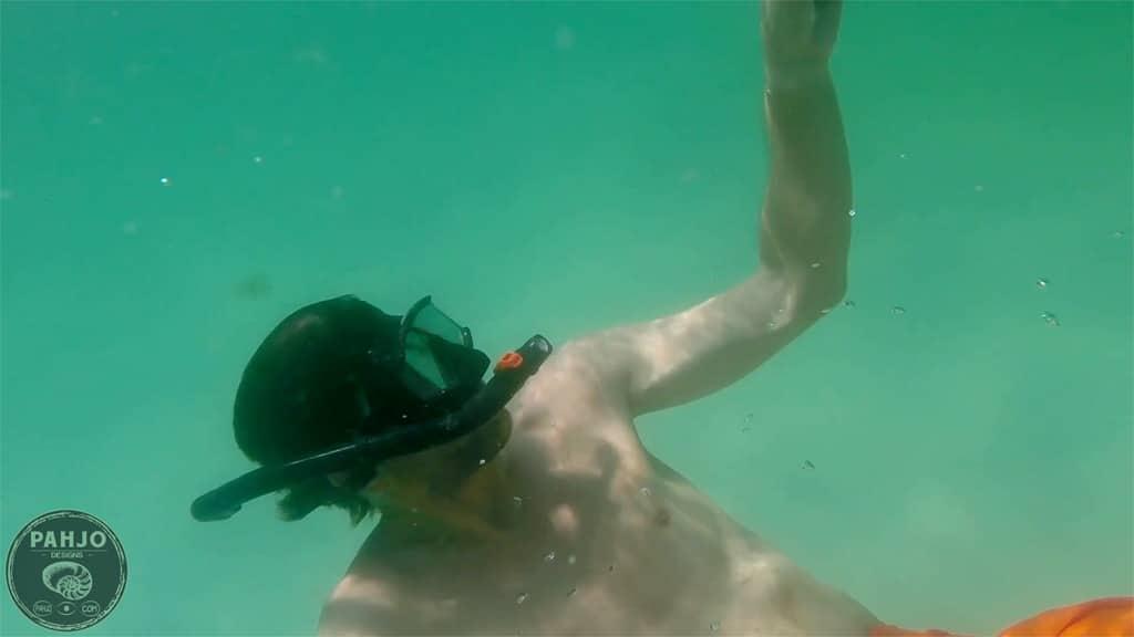 snorkeling in Destin, Florida