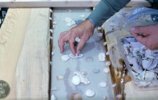 how to set shells in resin