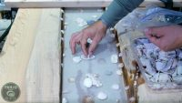 How to Make a Seashell Resin Table